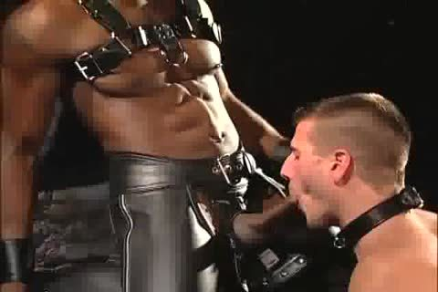 Porn gay leather Leather Gay